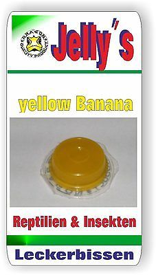 Jelly Food Dragon 1x16gr Fruchtgelee Banane für Reptilien Käfer Insekten Vögel