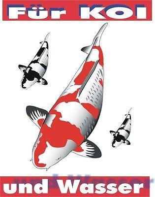 KOI Claim 3 Liter Entgiftet das Teichwasser u versorgt Fische m Spurenelementen