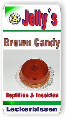 Jelly Food Dragon 2x16gr Fruchtgelee Brown Candy für Reptilien Käfer Insekten