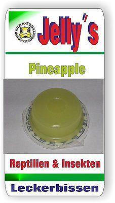 Jelly Food Dragon 20x16gr Fruchtgelee Pineapple für Reptilien Käfer Insekten